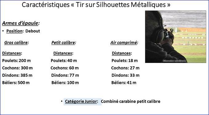 Capture Silouhette Métal3.JPG