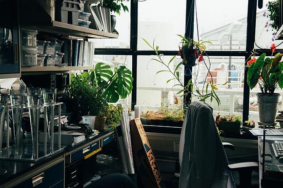 laboratory scientific services