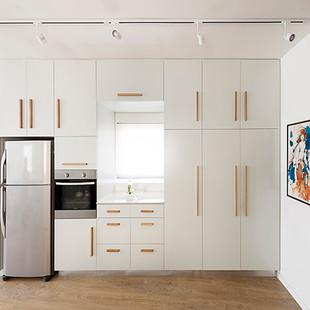 Tlv apartment 06