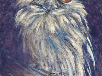 Pastel Painting: A tawny frogmouth