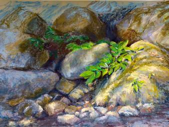 Pastel painting: Light on the rainforest floor