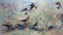 Pastel Painting: Tree martins at Barrington Tops