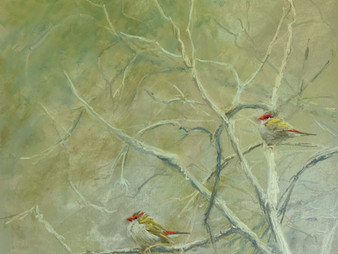 Pastel Painting: Firetails