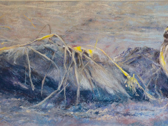 Pastel painting: Pipit on the beach