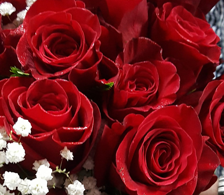 RED%20Roses%20Freedom%20by%20Petra%20May%2015%202016%20Hand%20tied_edited.jpg