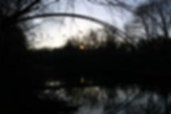 Neponset Sunrise & Birds website.jpg