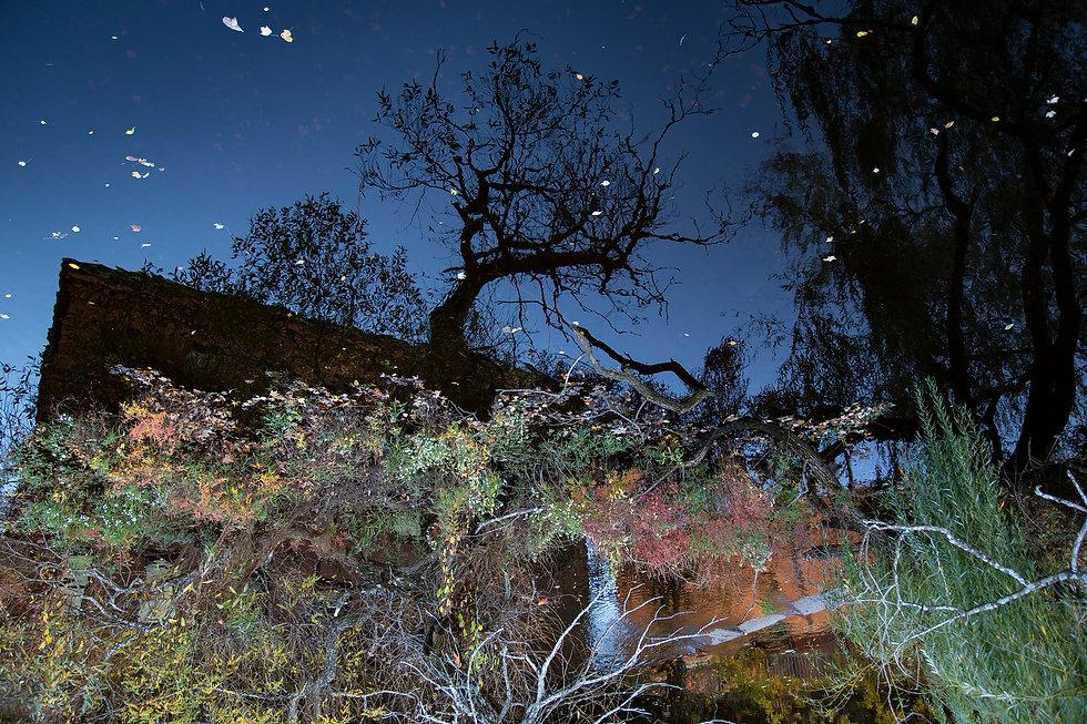 Inside The Neponset stoklephotography.jp