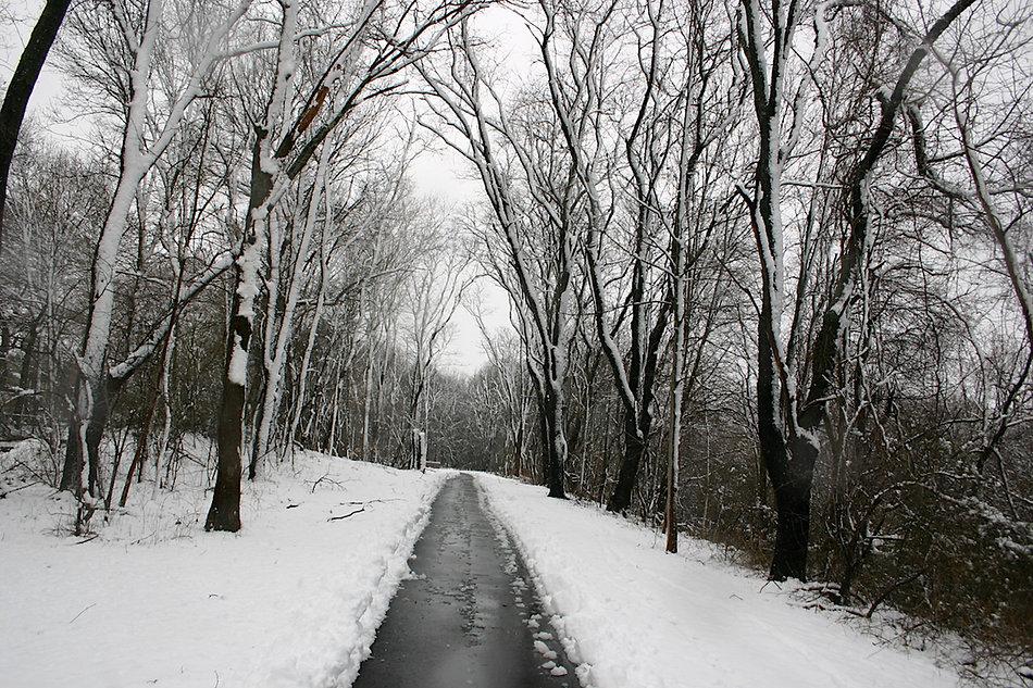 Pathway Extension website.jpg