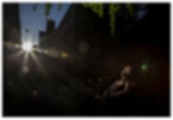 Savory Rays 87 white frame web copy.jpg