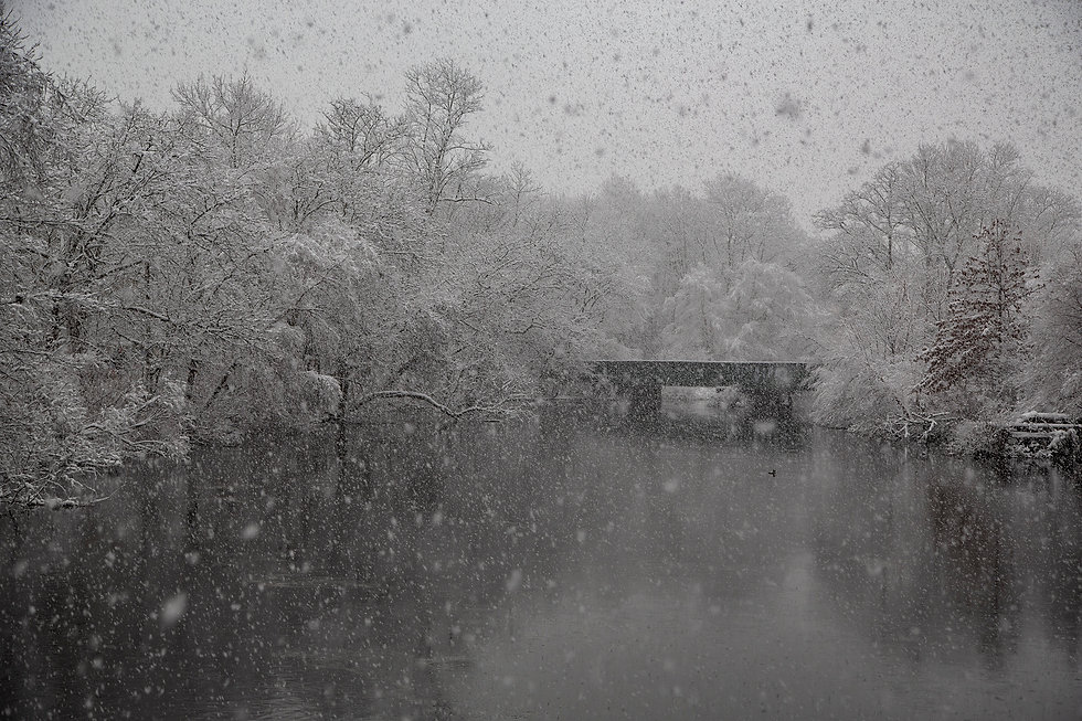 Neponset Snow stoklephotography.jpg