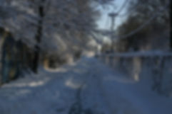 Pathway near Butler website.jpg