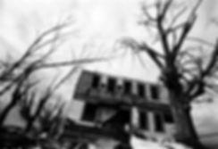 Perkin's House II website.jpg
