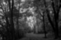 Pathway Extenstion in  B&W website.jpg