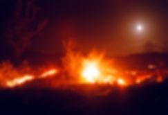 LavaTrees&Moon web.jpg