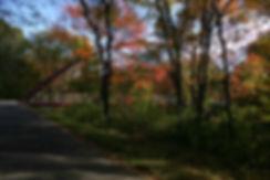 Pathway Extension Bridge Fall website.jp