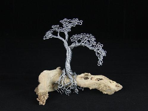 8in Bonsai Tree on Driftwood #12116