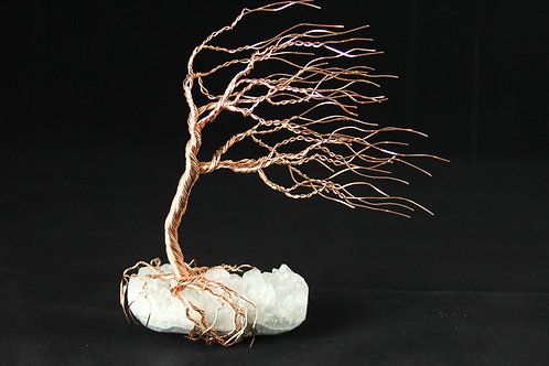 Wind Blown Tree of Life on Apophyllite Mineral Gift Set #2296