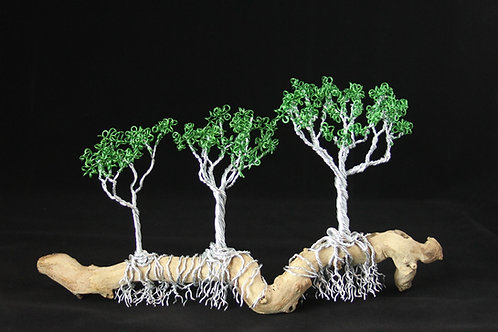 Trees on Driftwood Branch #2294
