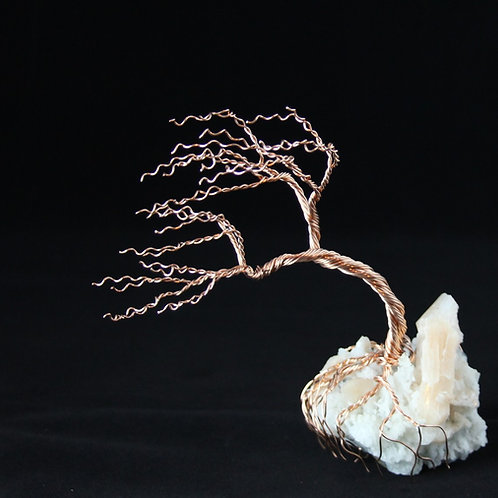 Wind Blown Tree of Life on Apophyllite Mineral Gift Set #2297