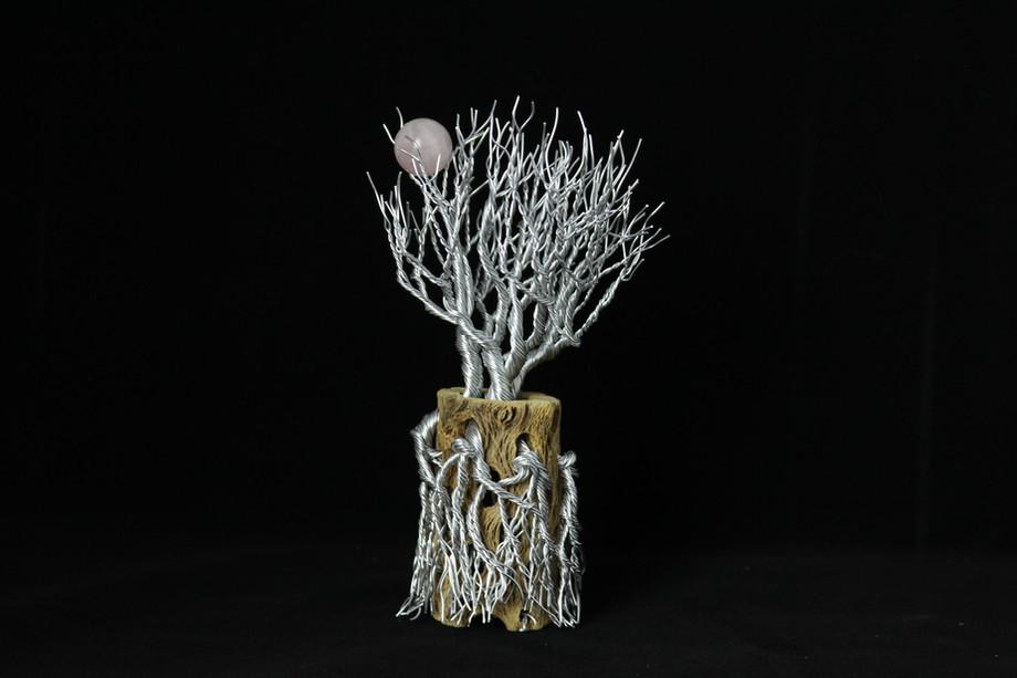 Cacuts Sculpture with Qartz Moon