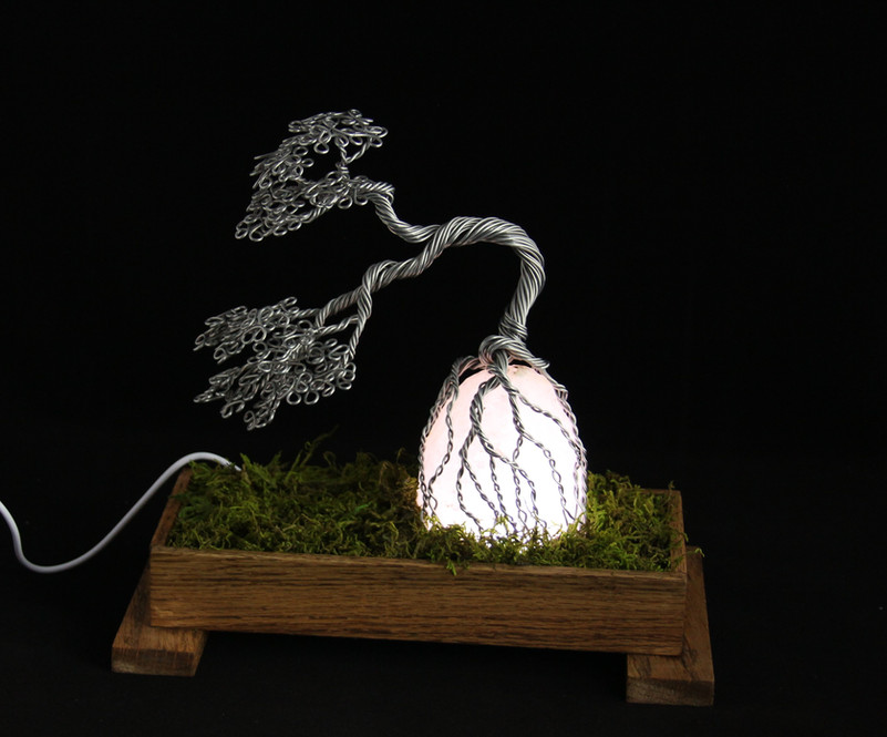 Bonsai on Salt Lamp