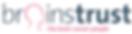 brainstrust logo 116x30 WEB.png