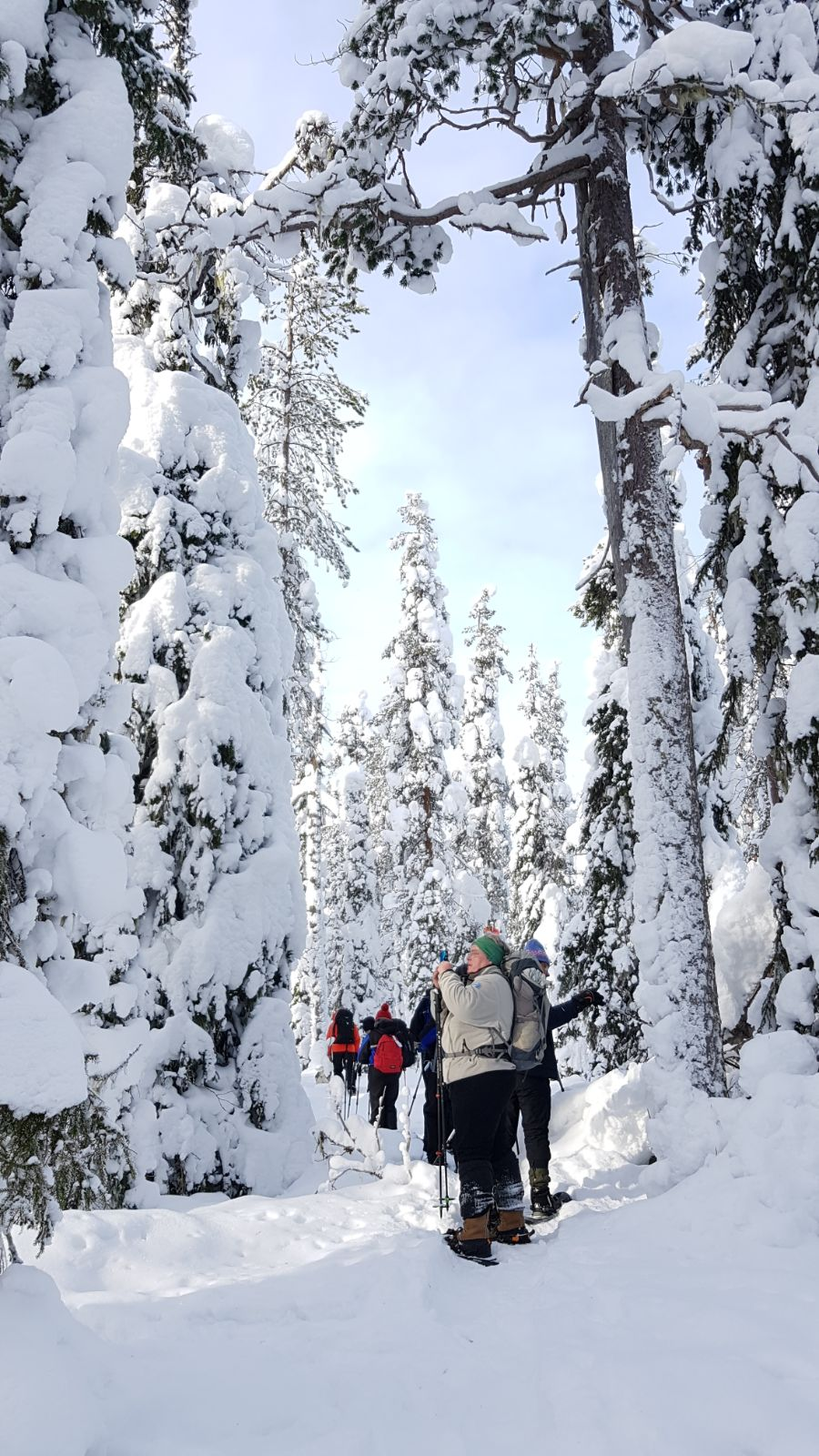 Snowshoeing holiday