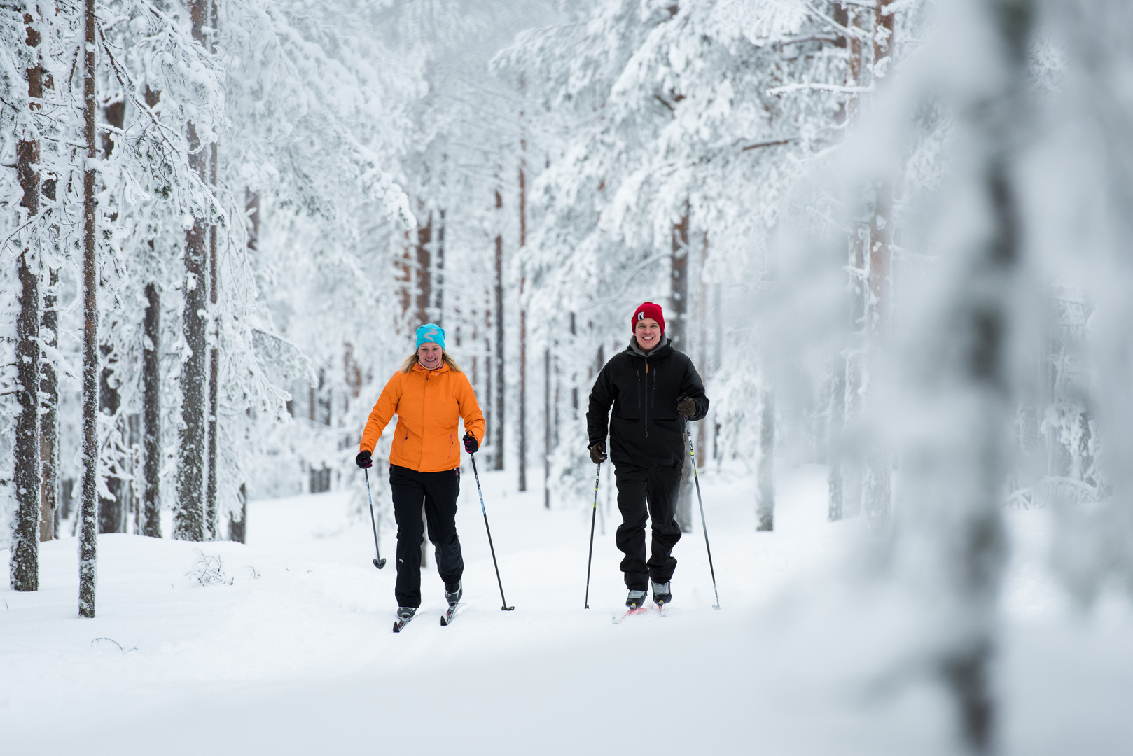 Skiers in South Lapland