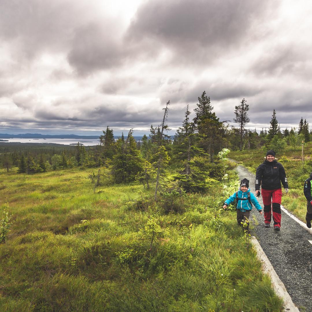 Family tour in South Lapland Riisitunturi