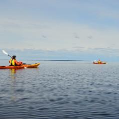 Kayaking Wild Taiga