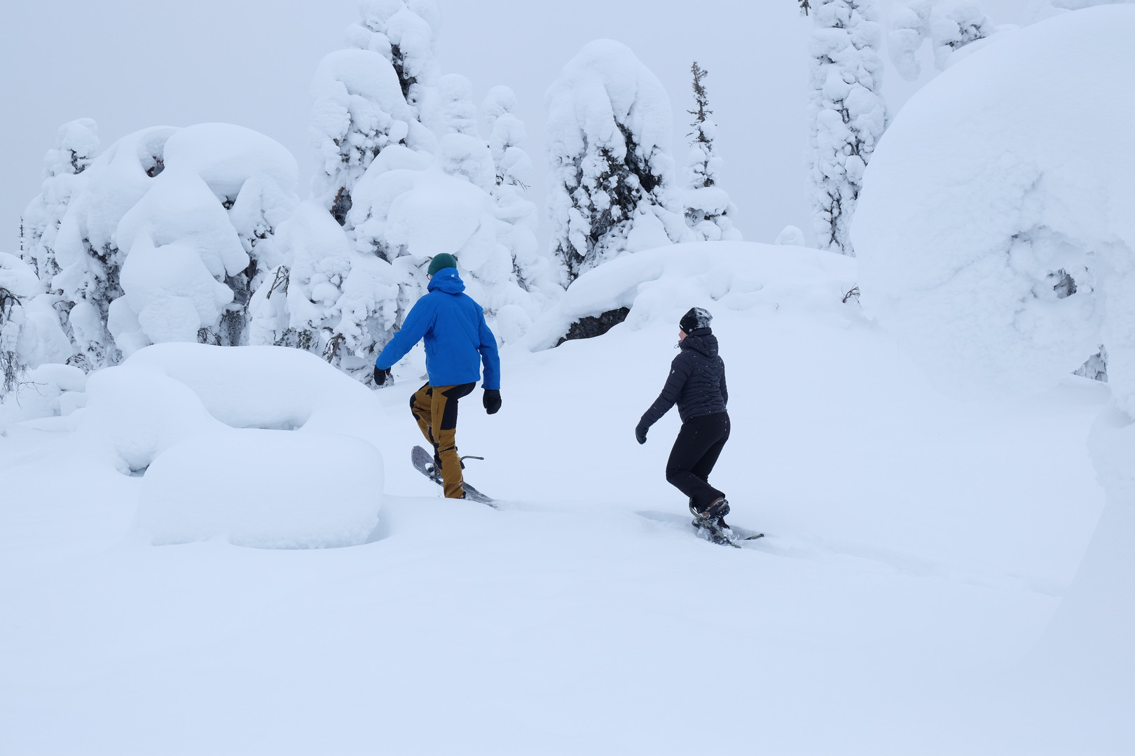 Snowshoeing in South Lapland