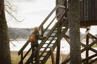 birdwatching tour in finland