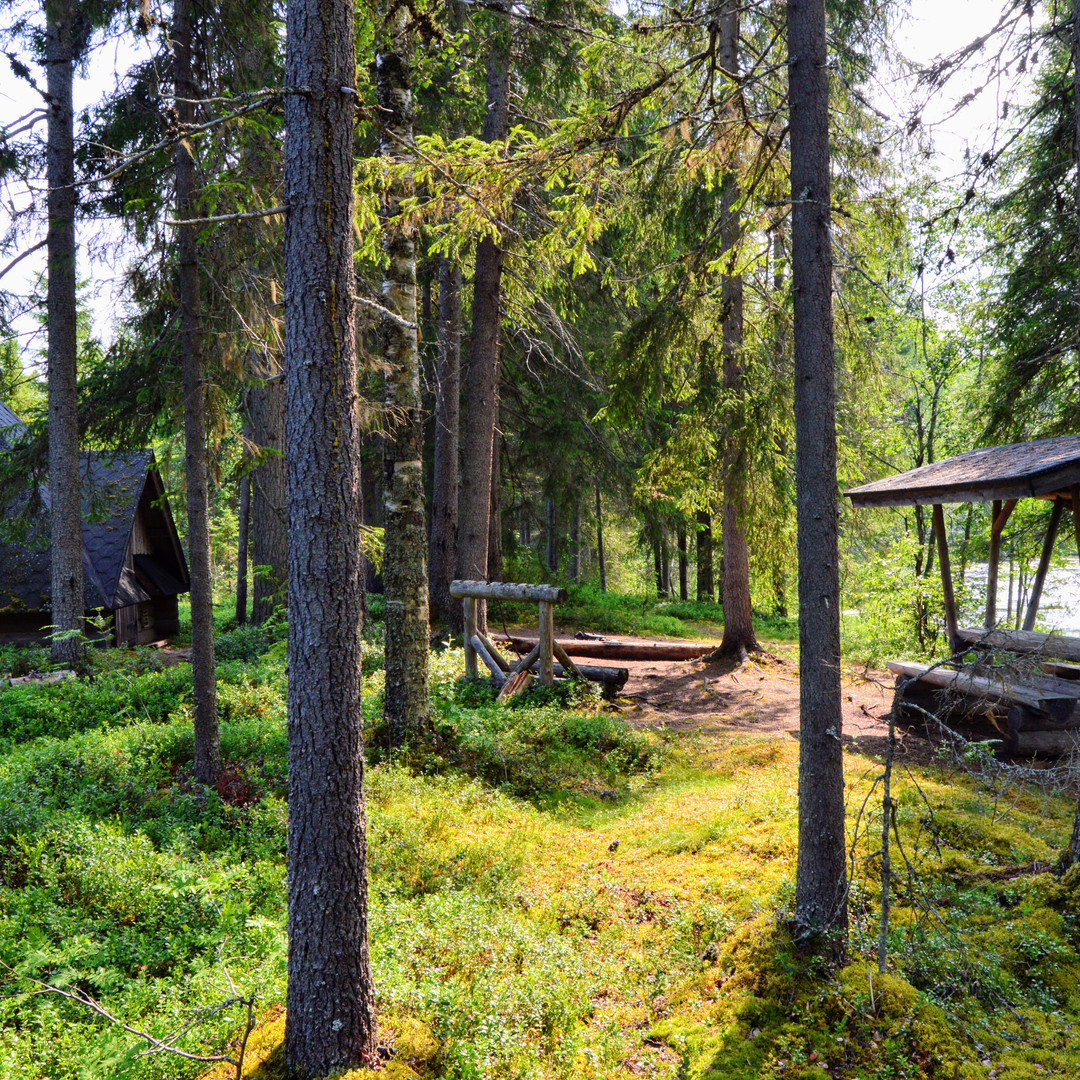 South Lapland hiking Hikes'n Trails