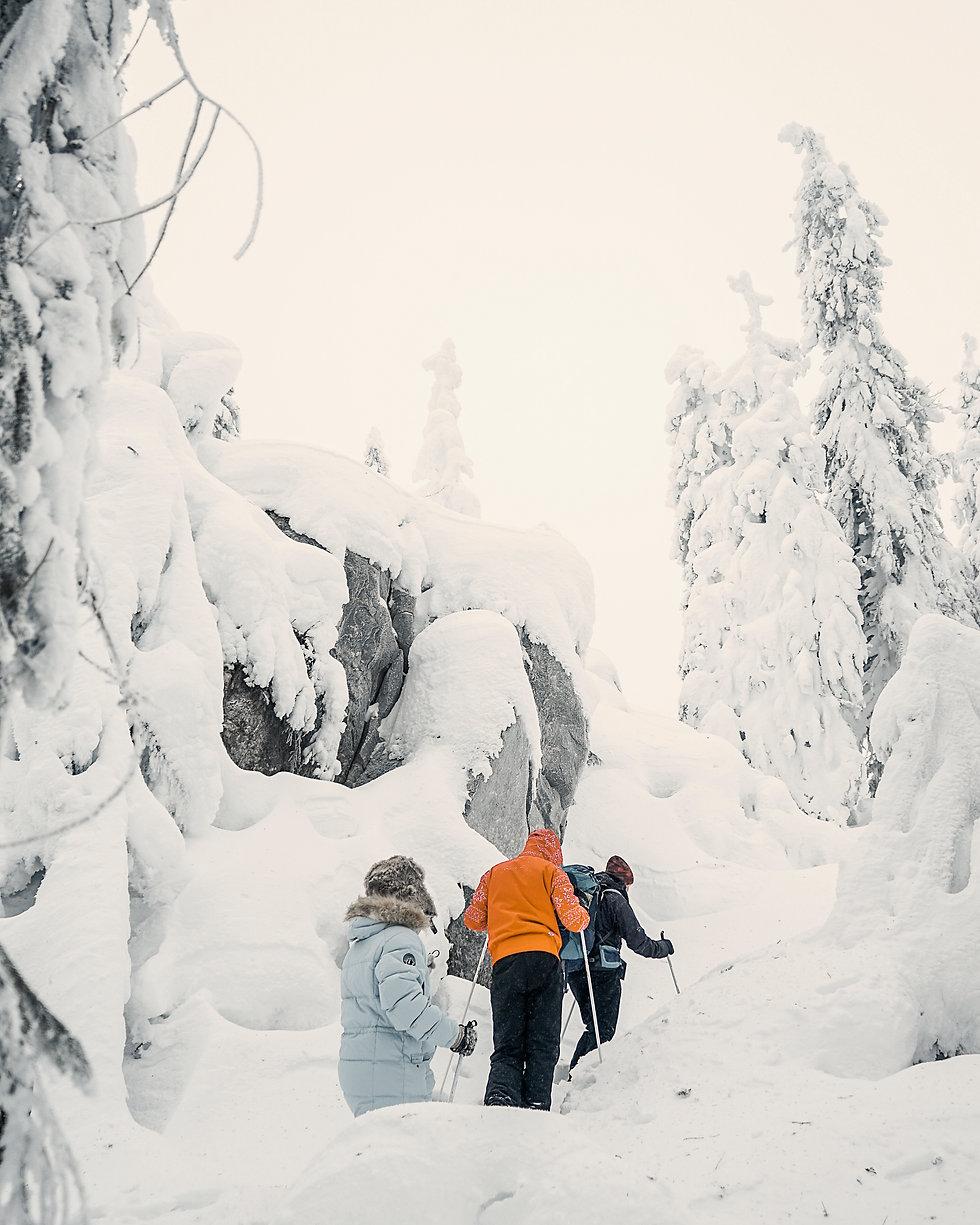 Finland_Vuokatti_snowshoeing_group.jpg