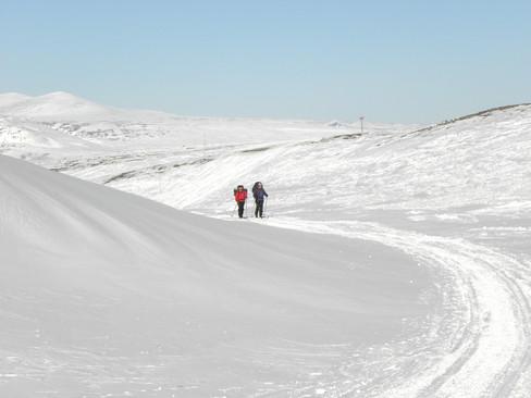 Swedish Lapland ski tour