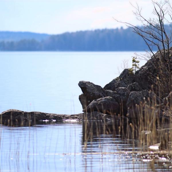 Saimaa ringed seal kayaking tours Hikes'n Trails