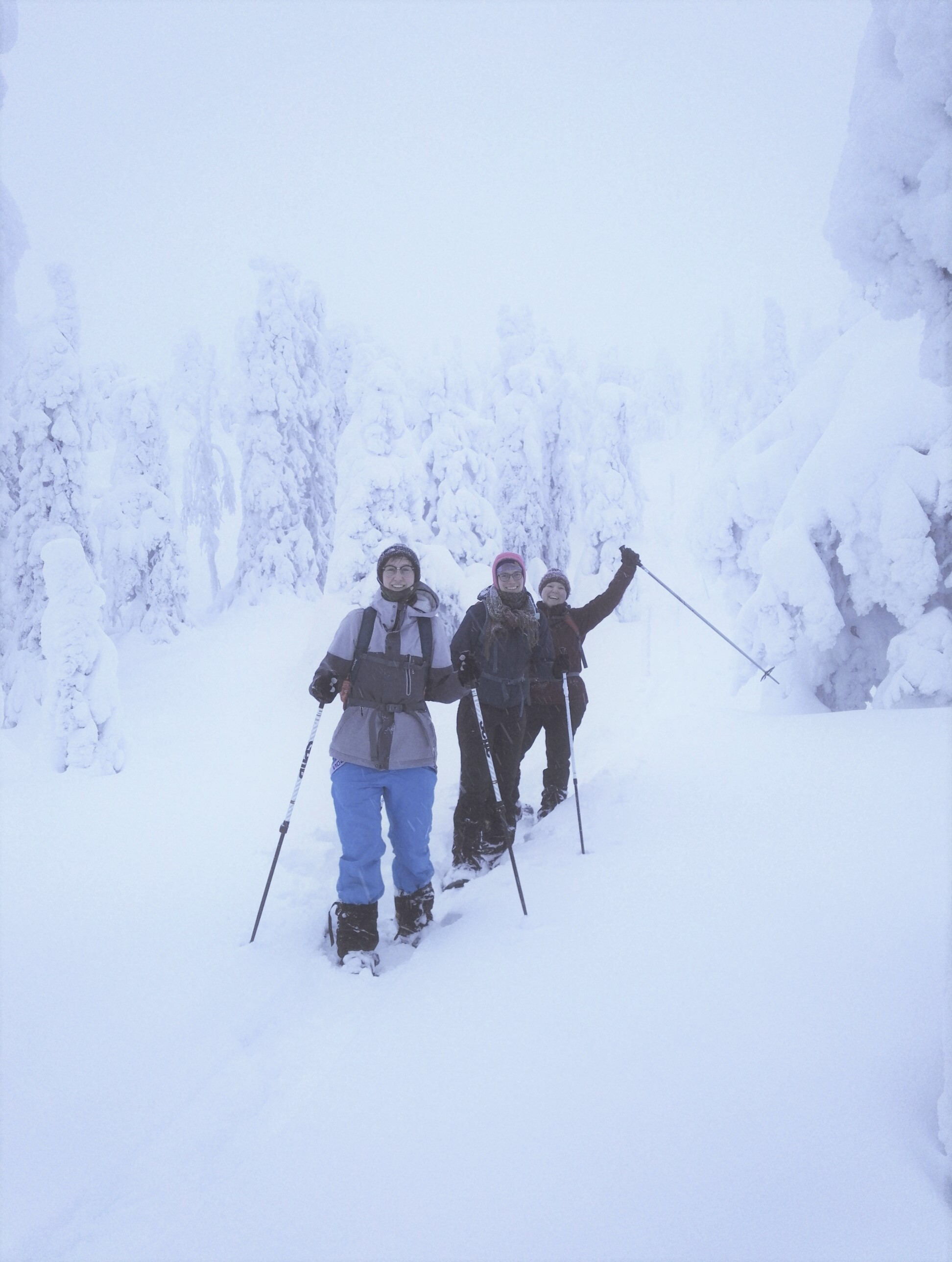 snowshoeinglapland