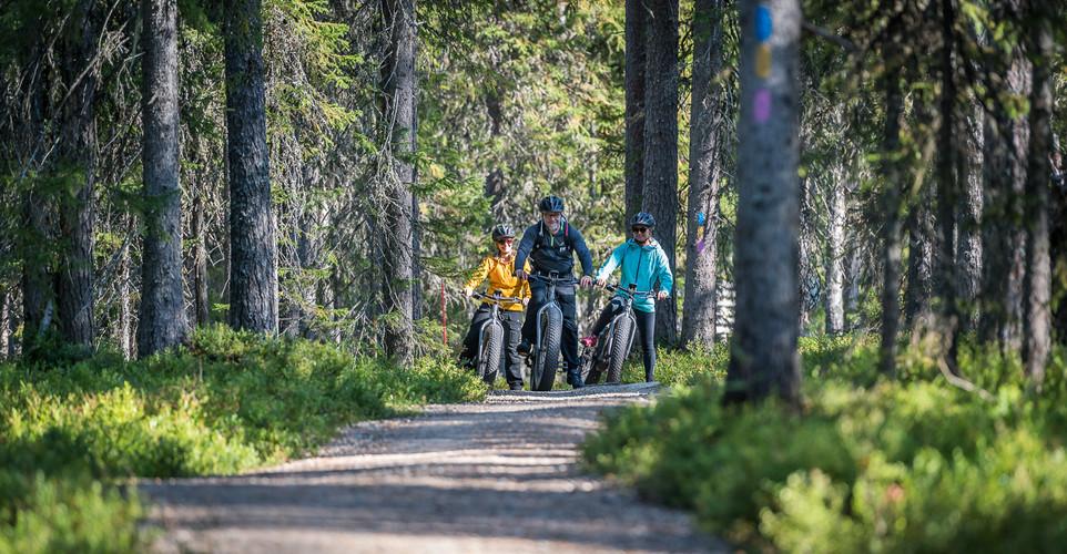 Biking in forest