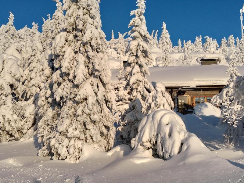 Syöte winter wonderland