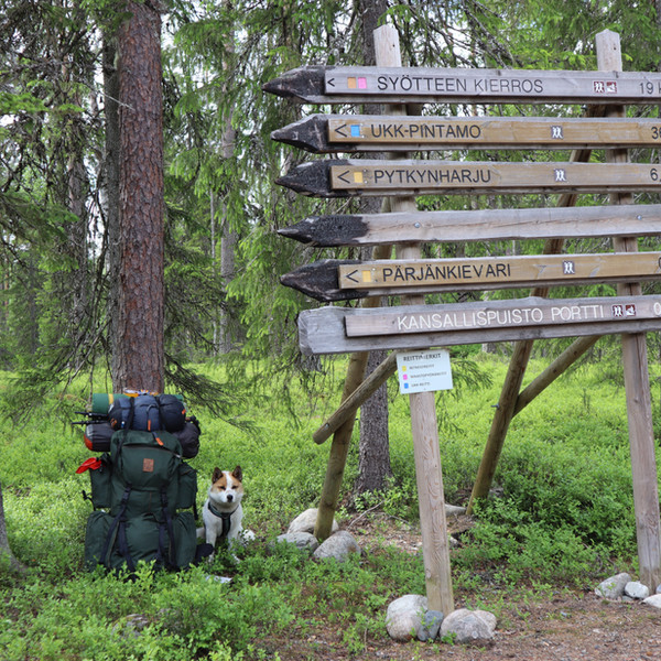 South Lapland Hiking tour in Syöte National Park
