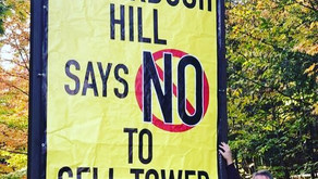 Some Huntsville residents are opposing Rogers cell tower application along Muskoka Rd. 10