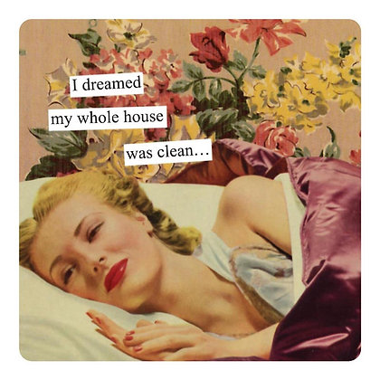 Dreamed My House Was Clean Magnet