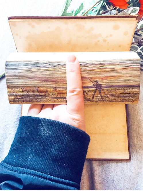 The Poetical Works of Sir Walter Scott vol IX with beautiful fore-edge painting