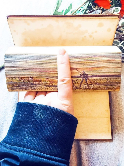 Fore-Edge Painted Sir Walter Scott's Poetical Works incl. Rokeby & Don Roderick
