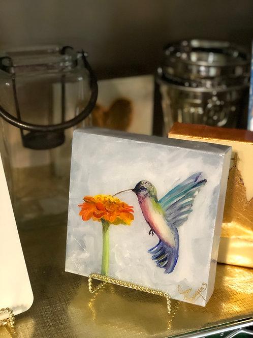 "6""x 6"" Hummingbird with Orange Zinnia"