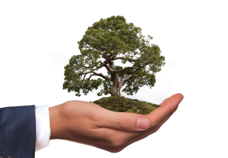 Three steps to becoming a more sustainable business