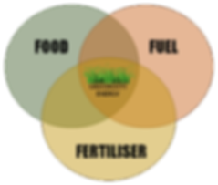 Food-Fuel-Fertiliser.png