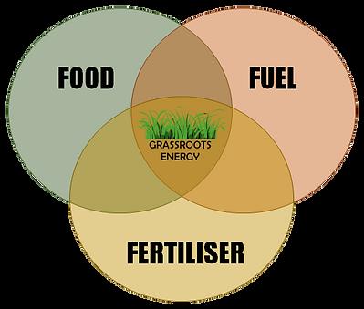 Food-Fuel-Fertiliser.png