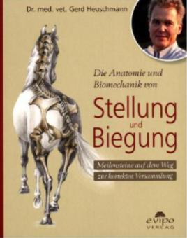 Anatomie von Stellung und Biegung.PNG