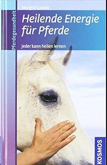 Heilende-Energie-für-Pferde